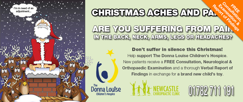 newcastle chiro toy drive 2018